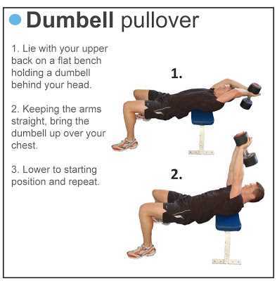 Dumbbell Pullovers – 3 Reasons To Perform Pullovers | Best Body Tips